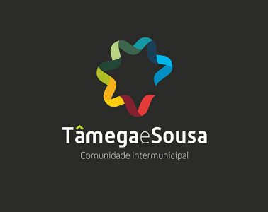 Tâmega e Sousa discutiram, Webinars temáticos