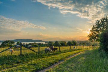 Jovens Agricultores, Agricultura Biológica